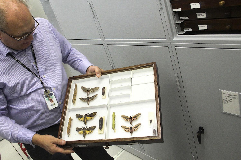 A visita às colecções pode ser feita por qualquer pessoa que tenha interesse nelas