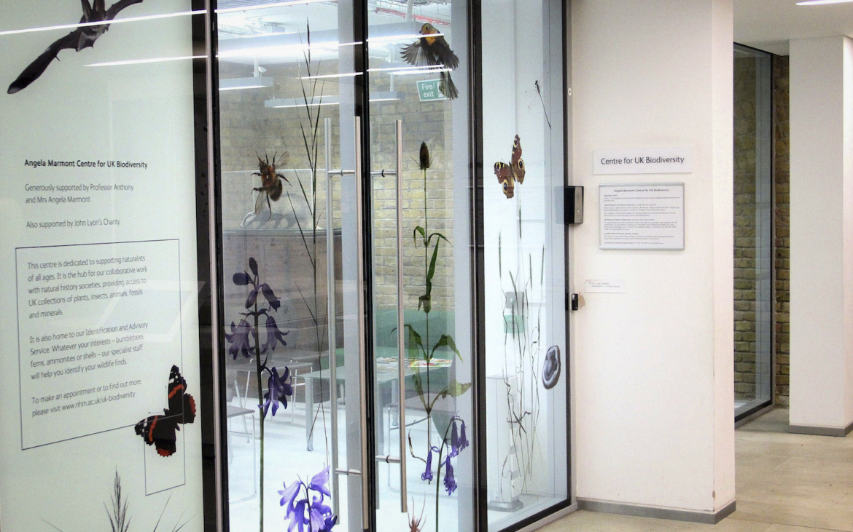 A entrada para o Centro Angela Marmont, no Museu de História Natural de Londres