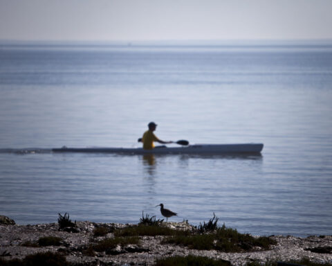 canoa no rio tejo