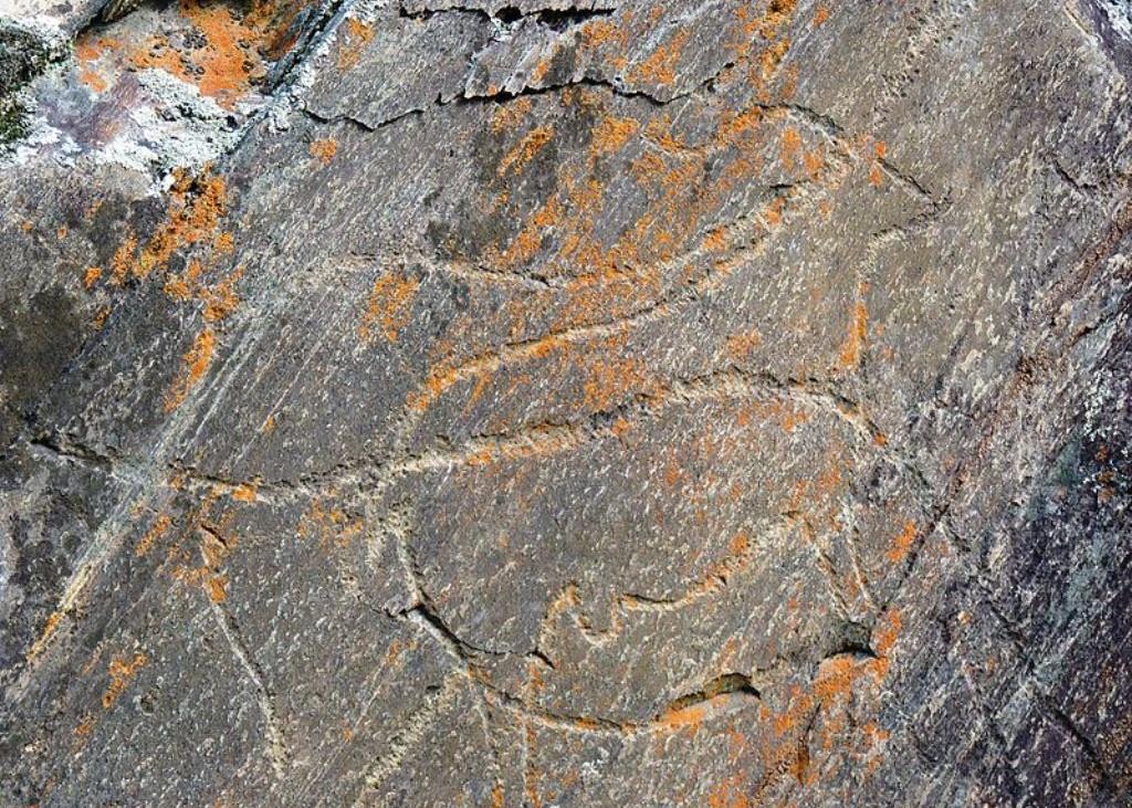 Núcleo de Arte Rupestre da Penascosa (Vale do rio Côa). D.R.