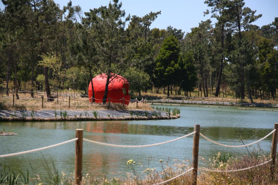 Vista parcial do Parque Ambiental do Buçaquinho. Foto: Câmara Municipal de Ovar