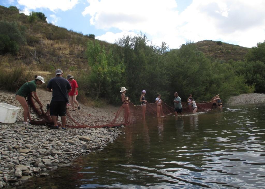 Um grupo de voluntários ajuda a capturar espécies exóticas, com uma rede de cerco.