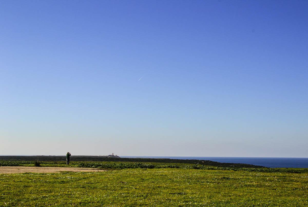Vale Santo, Sagres, no Inverno. Um paraíso para Petinhas, Lavercas, Abibes, Fringilídeos e Trigueirões. Foto: Nuno Barros