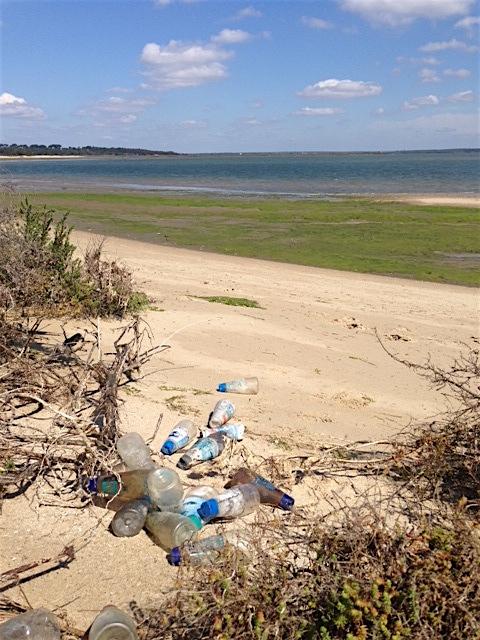 Embalagens de sal no Estuário do Sado. Foto: Ocean Alive