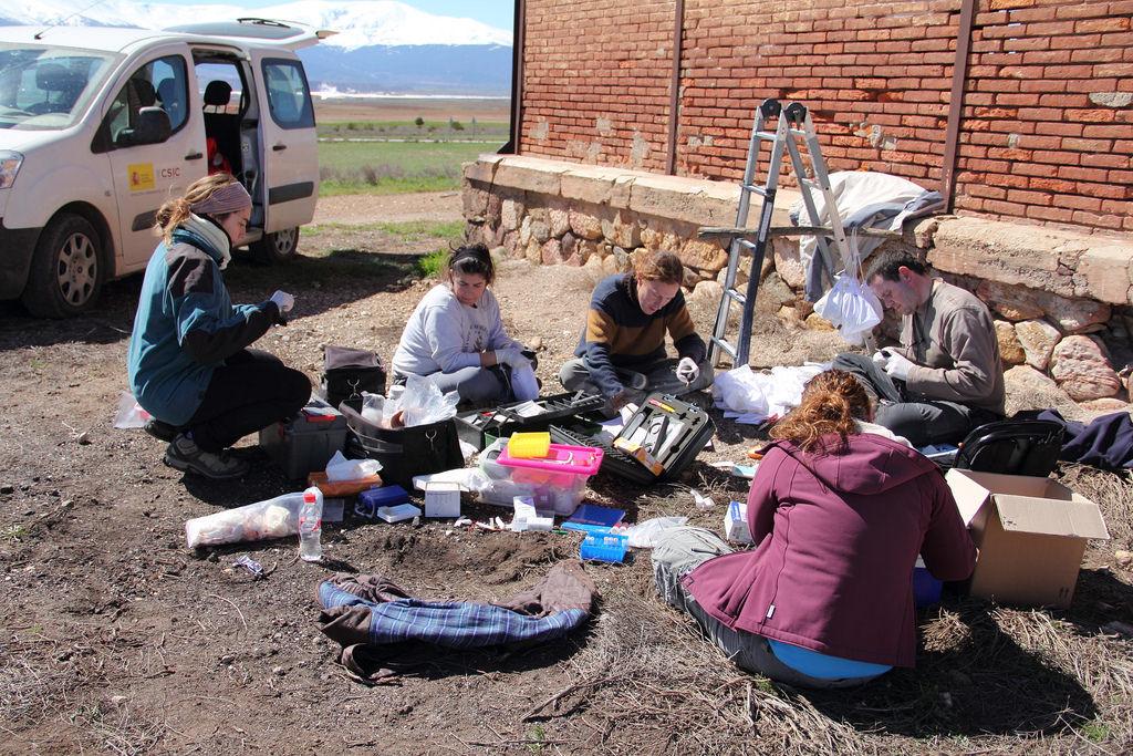 Investigadores a preparar-se para recolher amostras dos ninhos. Foto: Fundación Descubre