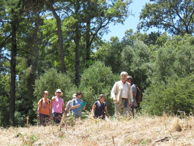 um grupo de pessoas à procura de algo, numa floresta