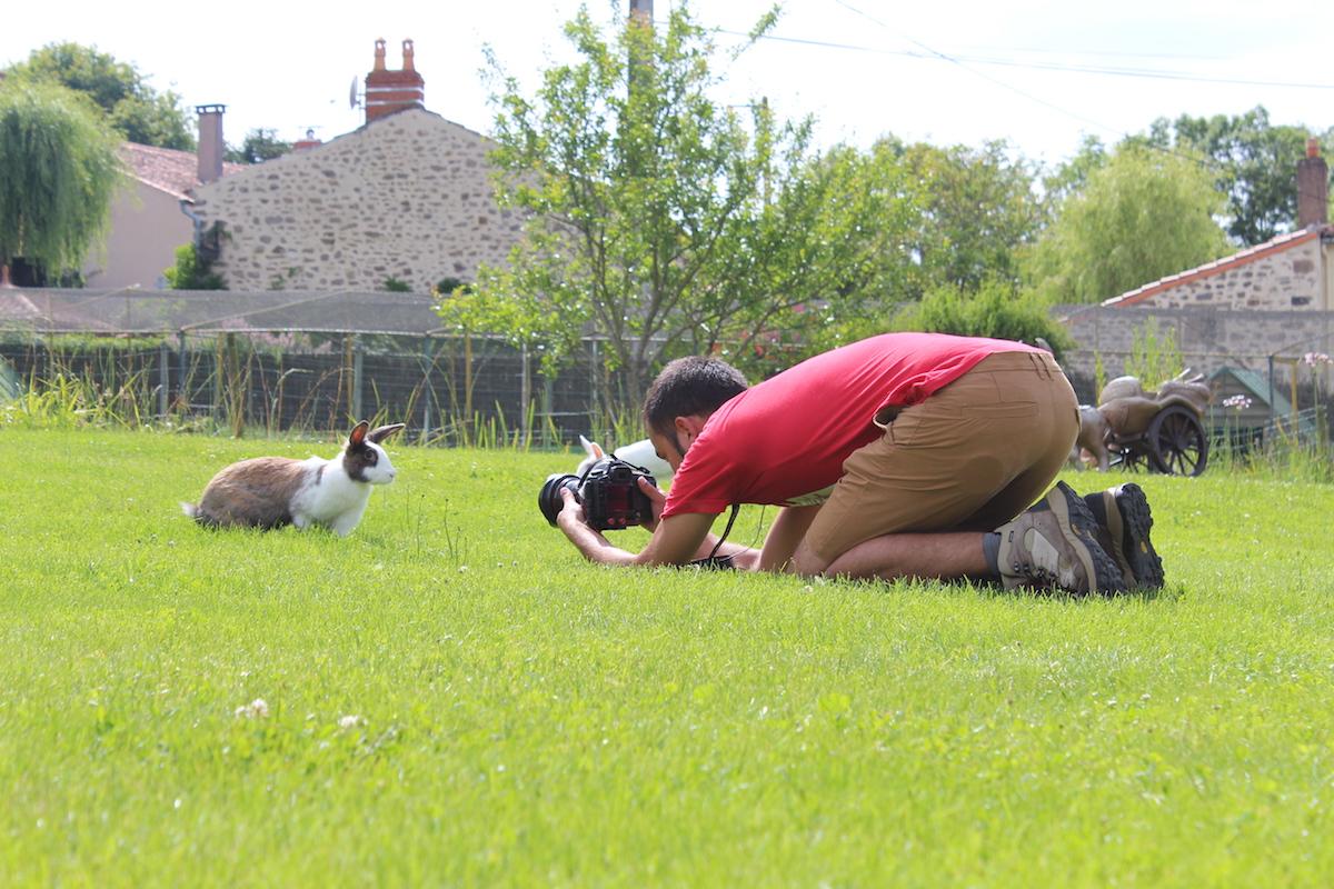 Investigação sobre coelhos, França