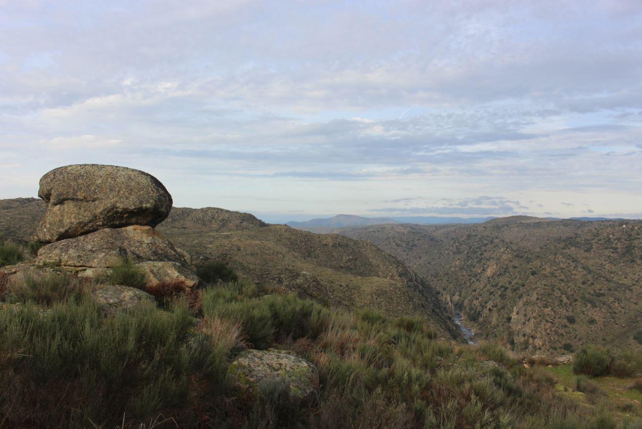 Vista para o Vale do Côa a partir do lado de Cidadelhe Foto: ATN