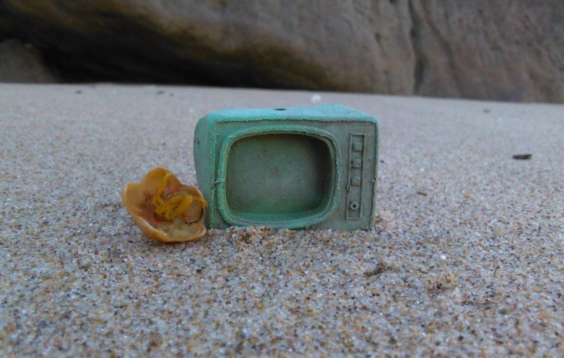 Foto: Plasticus Maritimus