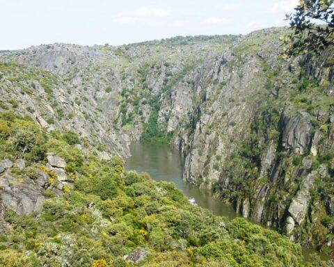 paisagem-com-as-escarpas-cinzentas-do-douro-que-emolduram-o-rio