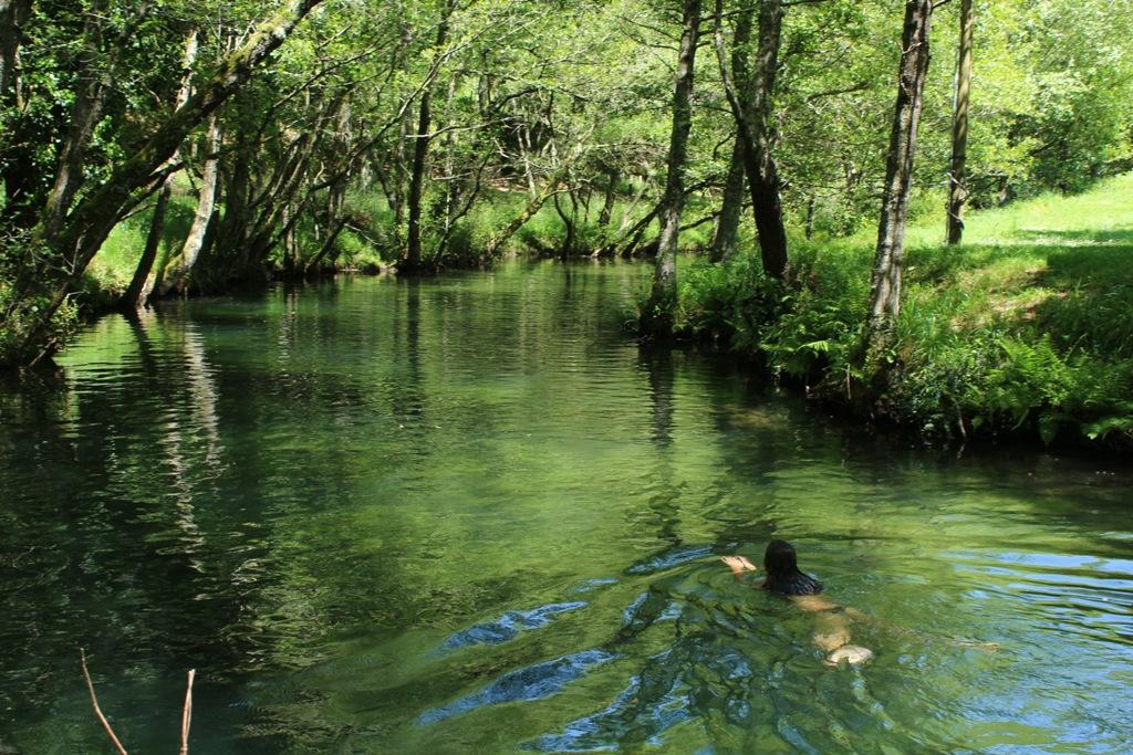 uma-mulher-nada-dentro-de-um-rio-ensombrado-por-árvores