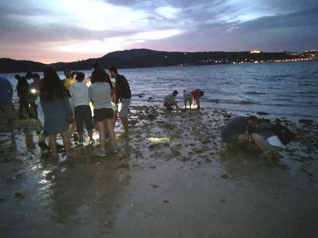 Um-grupo-de-pessoas-de-costas-na-beira-do-mar-alumiado-por-uma-luz-ao-início-da-noite