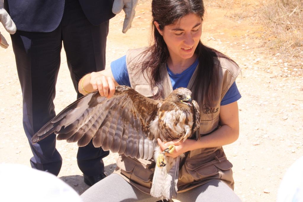 uma-mulher-segura-uma-águia-no-colo