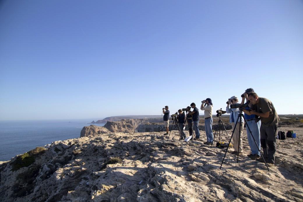 várias pessoas olham o horizonte com binóculos e telescópios