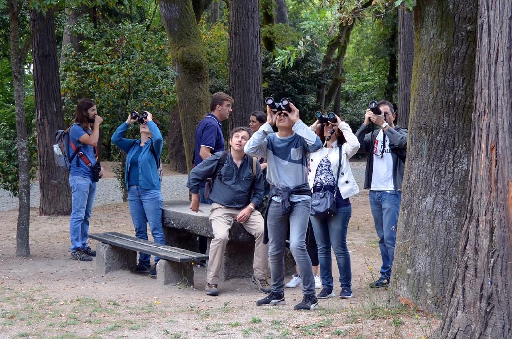 participantes no bioblitz espreitam por binóculos