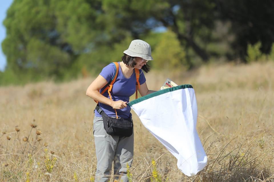 uma mulher olha para dentro de uma grande rede de tecido branco