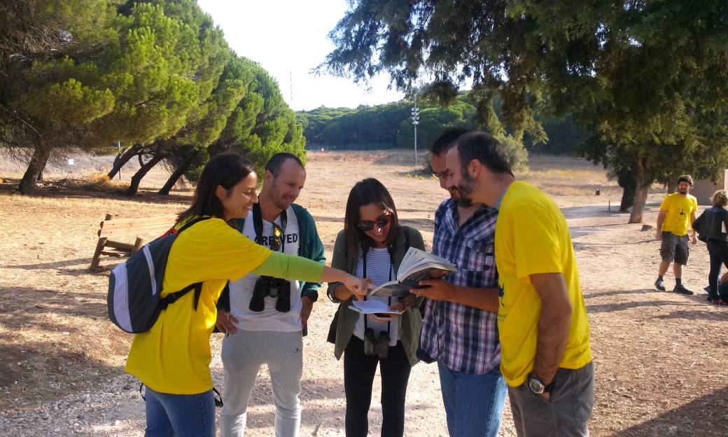 grupo reúne-se em torno de alguém que tem um guia de aves no Bioblitz de Monsanto