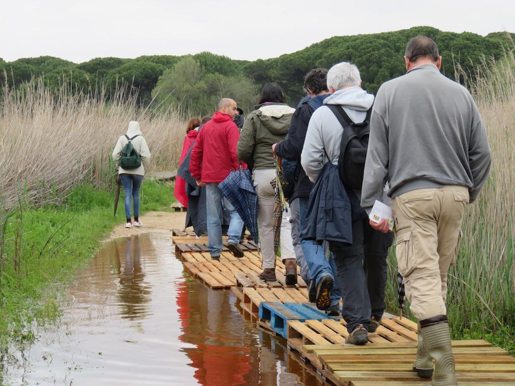 pessoas em fila atravessam água em cima de tábuas