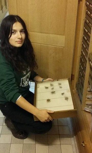 Ana Gonçalves com uma caixa com insectos